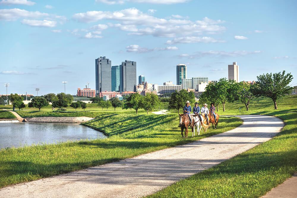 stockyard-horse-riding-skyline